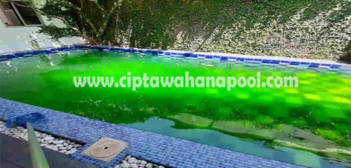 kolam renang menjadi hijau dan berlumut